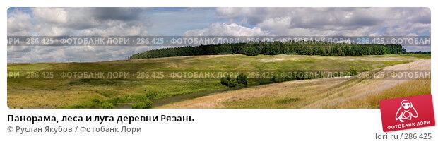 Панорама, леса и луга деревни Рязань, фото № 286425, снято 23 мая 2017 г. (c) Руслан Якубов / Фотобанк Лори
