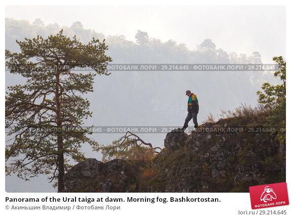 Купить «Panorama of the Ural taiga at dawn. Morning fog. Bashkortostan.», фото № 29214645, снято 9 сентября 2017 г. (c) Акиньшин Владимир / Фотобанк Лори