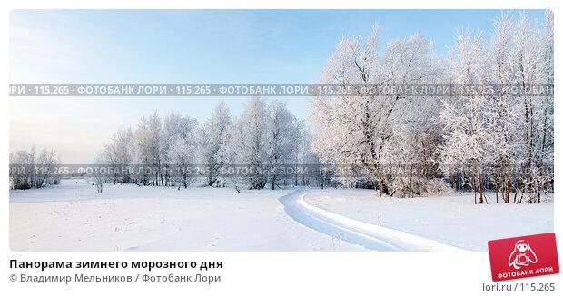 Панорама зимнего морозного дня, фото № 115265, снято 29 апреля 2017 г. (c) Владимир Мельников / Фотобанк Лори