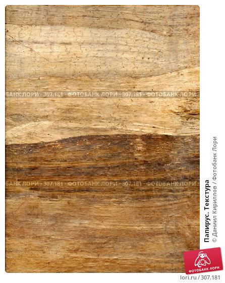 Купить «Папирус. Текстура», фото № 307181, снято 18 марта 2018 г. (c) Даниил Кириллов / Фотобанк Лори