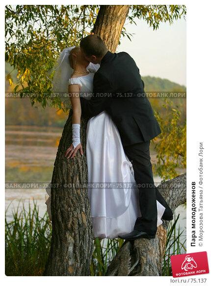 Купить «Пара молодоженов», фото № 75137, снято 2 октября 2005 г. (c) Морозова Татьяна / Фотобанк Лори