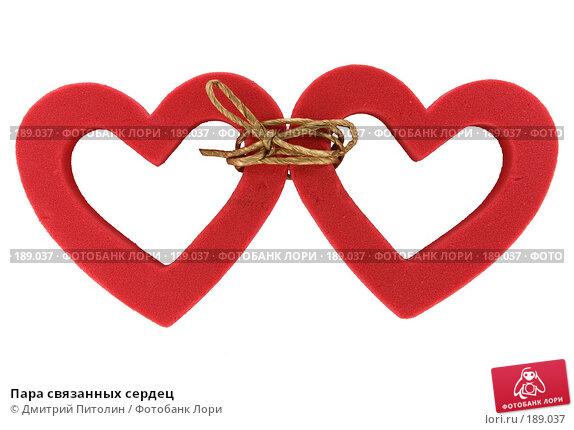 Пара связанных сердец, фото № 189037, снято 27 января 2008 г. (c) Дмитрий Питолин / Фотобанк Лори