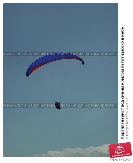 Парапланерист под синим крылом летит высоко в небе, фото № 67237, снято 20 августа 2004 г. (c) Harry / Фотобанк Лори