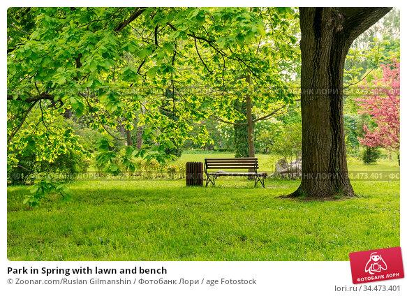 Park in Spring with lawn and bench. Стоковое фото, фотограф Zoonar.com/Ruslan Gilmanshin / age Fotostock / Фотобанк Лори