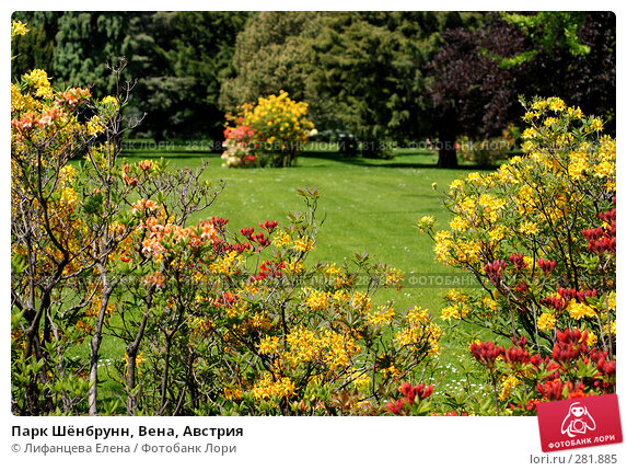 Парк Шёнбрунн, Вена, Австрия, фото № 281885, снято 6 мая 2008 г. (c) Лифанцева Елена / Фотобанк Лори