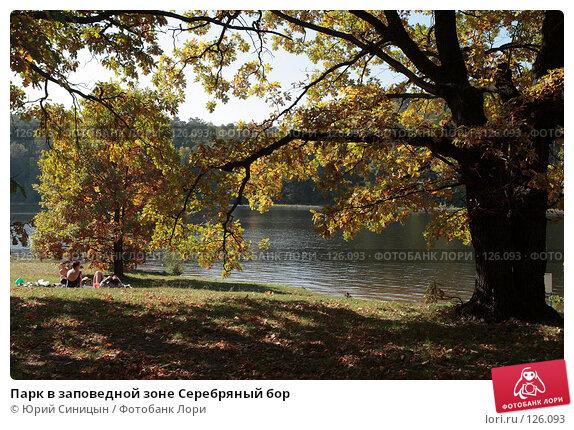 Парк в заповедной зоне Серебряный бор, фото № 126093, снято 22 сентября 2007 г. (c) Юрий Синицын / Фотобанк Лори
