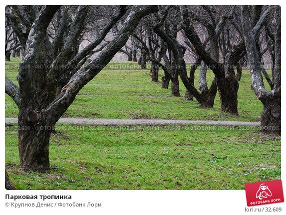 Парковая тропинка, фото № 32609, снято 14 марта 2007 г. (c) Крупнов Денис / Фотобанк Лори