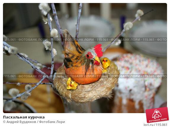 Пасхальная курочка, фото № 115061, снято 8 апреля 2007 г. (c) Андрей Бурдюков / Фотобанк Лори