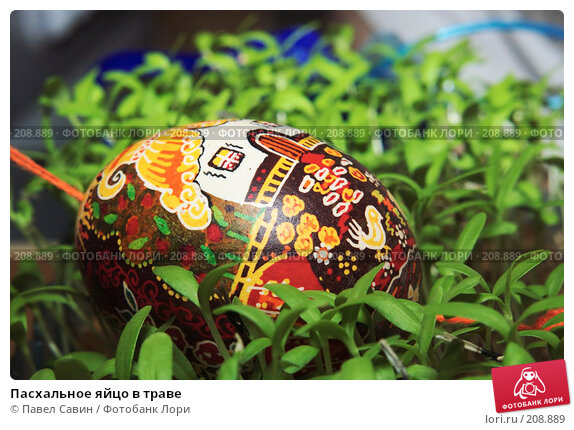 Пасхальное яйцо в траве, фото № 208889, снято 19 февраля 2008 г. (c) Павел Савин / Фотобанк Лори