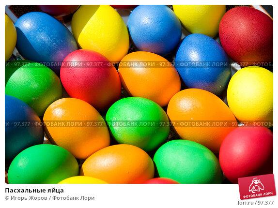 Пасхальные яйца, фото № 97377, снято 8 апреля 2007 г. (c) Игорь Жоров / Фотобанк Лори