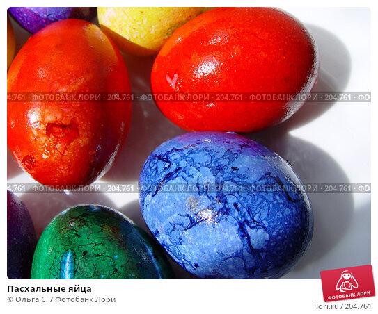 Пасхальные яйца, фото № 204761, снято 1 мая 2005 г. (c) Ольга С. / Фотобанк Лори