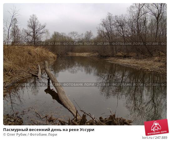 Пасмурный весенний день на реке Уссури, фото № 247889, снято 10 апреля 2008 г. (c) Олег Рубик / Фотобанк Лори