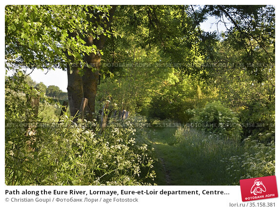 Path along the Eure River, Lormaye, Eure-et-Loir department, Centre... Стоковое фото, фотограф Christian Goupi / age Fotostock / Фотобанк Лори