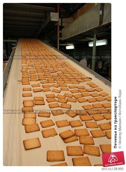 Печенье на транспортере, фото № 28993, снято 19 июля 2006 г. (c) 1Andrey Милкин / Фотобанк Лори