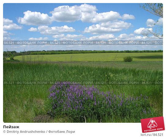 Пейзаж, фото № 84521, снято 27 мая 2006 г. (c) Dmitriy Andrushchenko / Фотобанк Лори