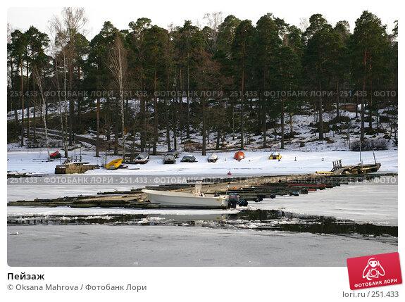 Пейзаж, фото № 251433, снято 3 апреля 2008 г. (c) Oksana Mahrova / Фотобанк Лори