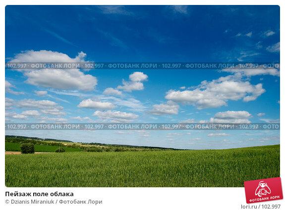 Пейзаж поле облака, фото № 102997, снято 23 мая 2017 г. (c) Dzianis Miraniuk / Фотобанк Лори