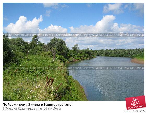 Пейзаж - река Зилим в Башкортостане, фото № 236205, снято 29 июня 2017 г. (c) Михаил Коханчиков / Фотобанк Лори
