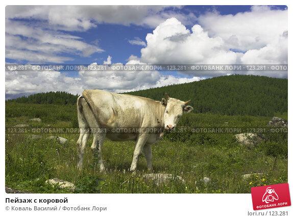 Пейзаж с коровой, фото № 123281, снято 30 мая 2017 г. (c) Коваль Василий / Фотобанк Лори