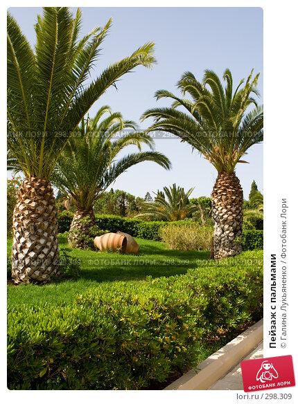 Пейзаж с пальмами, фото № 298309, снято 2 мая 2008 г. (c) Галина Лукьяненко / Фотобанк Лори
