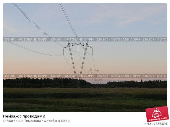 Пейзаж с проводами, фото № 336801, снято 12 июня 2007 г. (c) Екатерина Тимонова / Фотобанк Лори