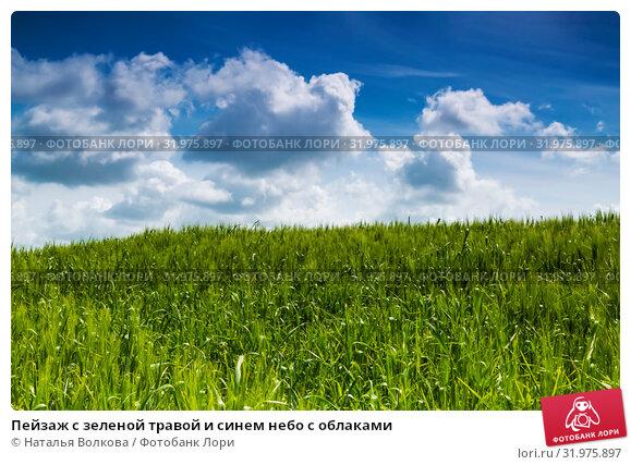 Купить «Пейзаж с зеленой травой и синем небо с облаками», фото № 31975897, снято 12 мая 2014 г. (c) Наталья Волкова / Фотобанк Лори