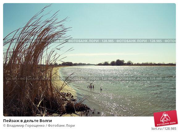 Пейзаж в дельте Волги, фото № 128985, снято 28 марта 2006 г. (c) Владимир Горощенко / Фотобанк Лори