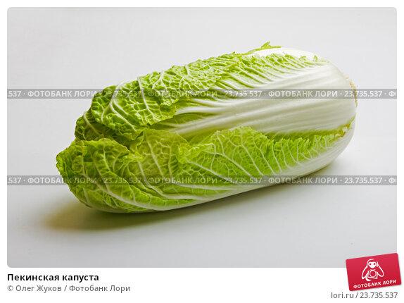 Купить «Пекинская капуста», фото № 23735537, снято 16 января 2012 г. (c) Олег Жуков / Фотобанк Лори