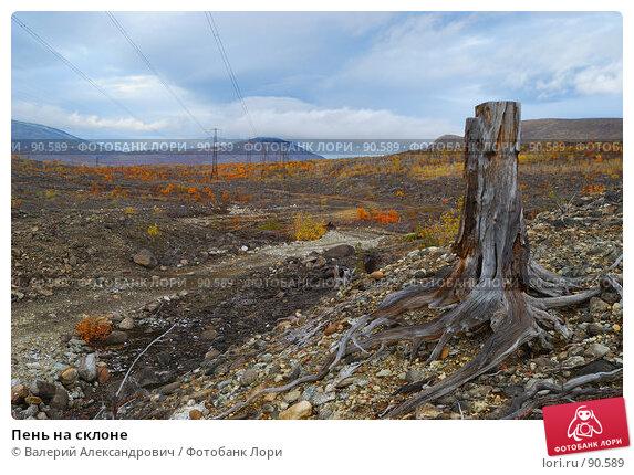 Купить «Пень на склоне», фото № 90589, снято 24 сентября 2007 г. (c) Валерий Александрович / Фотобанк Лори