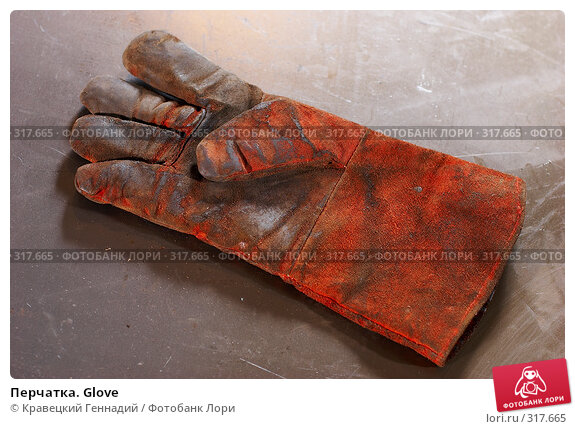 Купить «Перчатка. Glove», фото № 317665, снято 8 октября 2005 г. (c) Кравецкий Геннадий / Фотобанк Лори