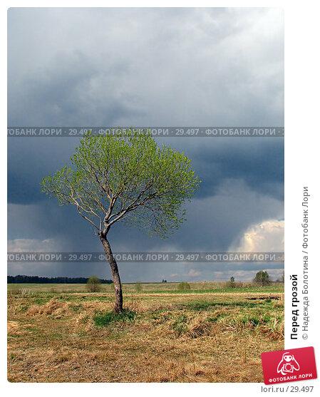 Купить «Перед грозой», фото № 29497, снято 7 мая 2006 г. (c) Надежда Болотина / Фотобанк Лори