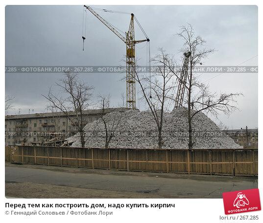 Перед тем как построить дом, надо купить кирпич, фото № 267285, снято 20 апреля 2008 г. (c) Геннадий Соловьев / Фотобанк Лори