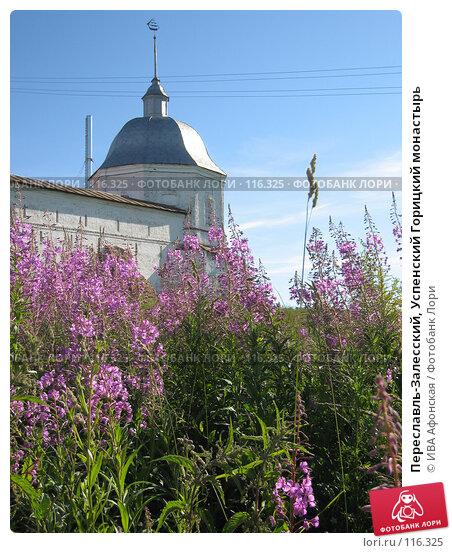 Переславль-Залесский, Успенский Горицкий монастырь, фото № 116325, снято 5 июля 2006 г. (c) ИВА Афонская / Фотобанк Лори