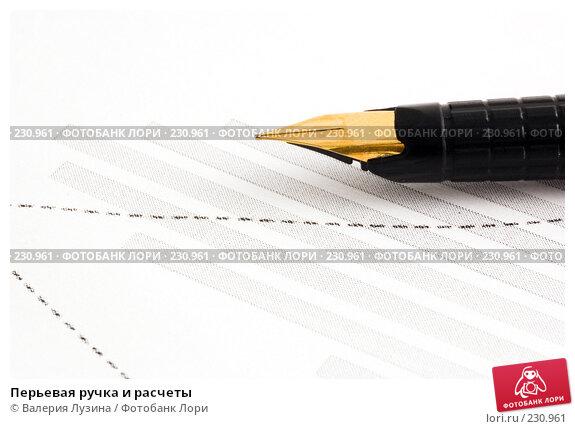 Перьевая ручка и расчеты, фото № 230961, снято 14 марта 2008 г. (c) Валерия Потапова / Фотобанк Лори