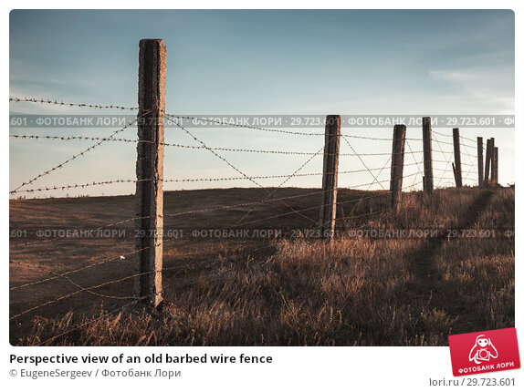 Купить «Perspective view of an old barbed wire fence», фото № 29723601, снято 28 октября 2018 г. (c) EugeneSergeev / Фотобанк Лори