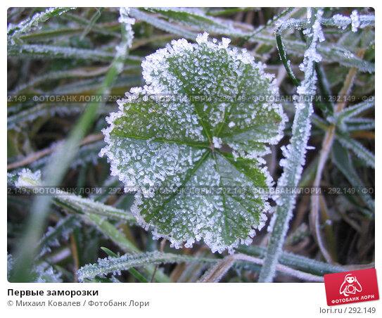 Первые заморозки, фото № 292149, снято 6 ноября 2007 г. (c) Михаил Ковалев / Фотобанк Лори