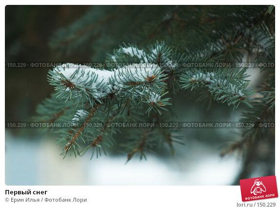 Купить «Первый снег», фото № 150229, снято 9 ноября 2007 г. (c) Ерин Илья / Фотобанк Лори