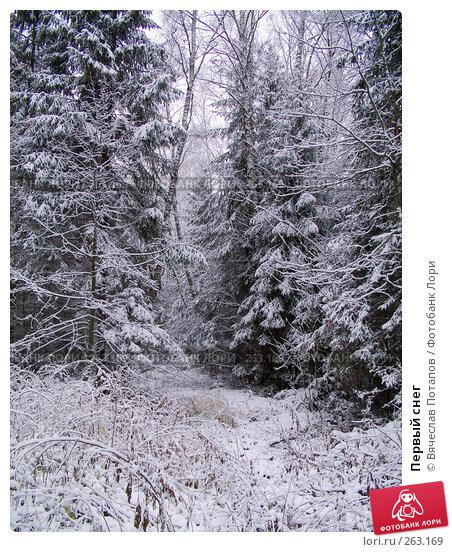 Первый снег, фото № 263169, снято 4 ноября 2007 г. (c) Вячеслав Потапов / Фотобанк Лори