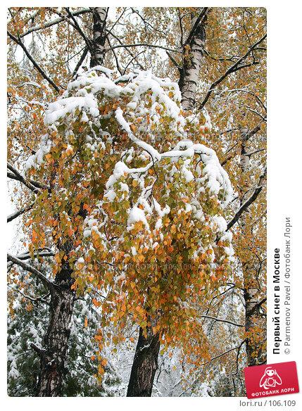 Первый снег в Москве, фото № 106109, снято 16 октября 2007 г. (c) Parmenov Pavel / Фотобанк Лори