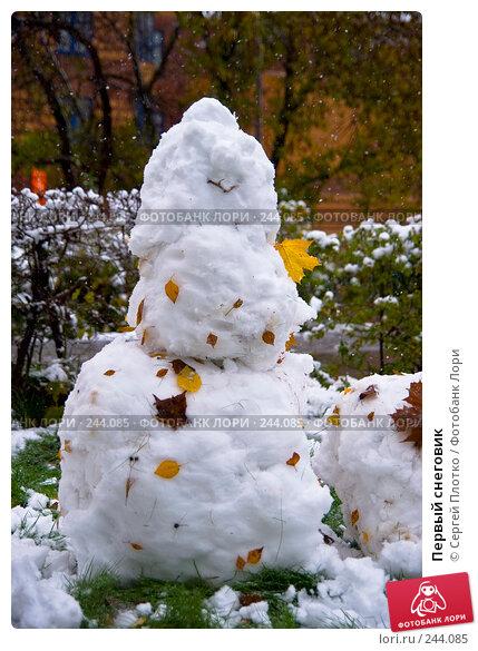 Первый снеговик, фото № 244085, снято 14 октября 2007 г. (c) Сергей Плотко / Фотобанк Лори