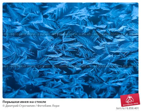 Купить «Перышки инея на стекле», фото № 6858401, снято 28 января 2012 г. (c) Дмитрий Строчилин / Фотобанк Лори