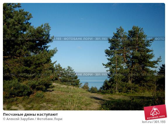 Купить «Песчаные дюны наступают», фото № 301193, снято 23 сентября 2007 г. (c) Алексей Зарубин / Фотобанк Лори
