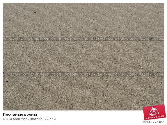 Купить «Песчаные волны», фото № 73045, снято 21 сентября 2005 г. (c) Alla Andersen / Фотобанк Лори