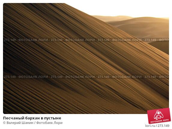 Песчаный бархан в пустыне, фото № 273149, снято 28 ноября 2007 г. (c) Валерий Шанин / Фотобанк Лори