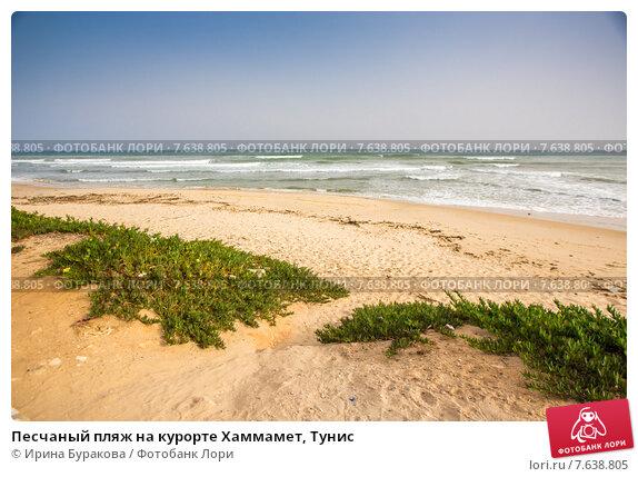 Песчаный пляж на курорте Хаммамет, Тунис, фото № 7638805, снято 13 июня 2015 г. (c) Ирина Буракова / Фотобанк Лори