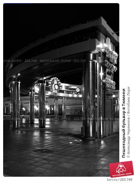 Пешеходный бульвар в Тюмени, фото № 203749, снято 12 декабря 2006 г. (c) Александр Черемнов / Фотобанк Лори