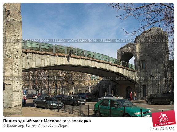 Купить «Пешеходный мост Московского зоопарка», фото № 313829, снято 2 апреля 2007 г. (c) Владимир Воякин / Фотобанк Лори