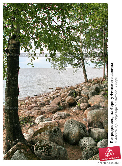 Петродворец, на берегу Финского залива, фото № 334361, снято 12 июня 2008 г. (c) Александр Секретарев / Фотобанк Лори