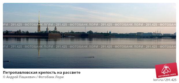 Петропавловская крепость на рассвете, фото № 291425, снято 26 октября 2016 г. (c) Андрей Пашкевич / Фотобанк Лори