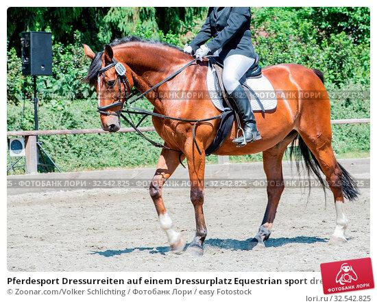 Купить «Pferdesport Dressurreiten auf einem Dressurplatz Equestrian sport dressage riding on a dressage course», фото № 32542825, снято 10 декабря 2019 г. (c) easy Fotostock / Фотобанк Лори